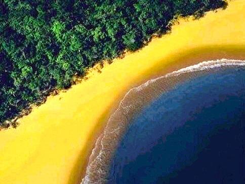 BrasilxHolanda Brasil