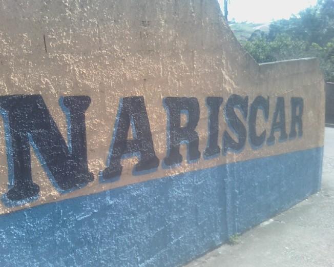 nariscar